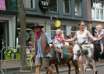 Een beestenboel met veel pony's in Hoorn [+video]