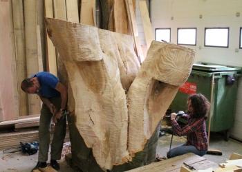 Gekapte monumentale beuk wordt boombank