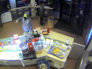 Foto's dader overval Snackbar Van Ree Aagje Dekenplein