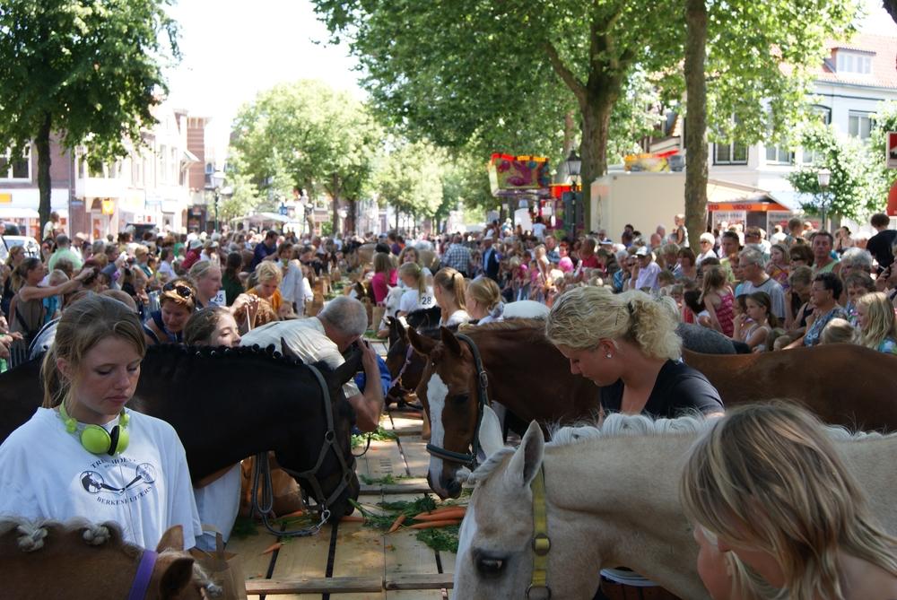 Wie doet er mee met de Hoornse ponydag?