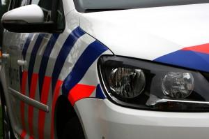 Koe op provincialeweg ramt auto's en politiemotor