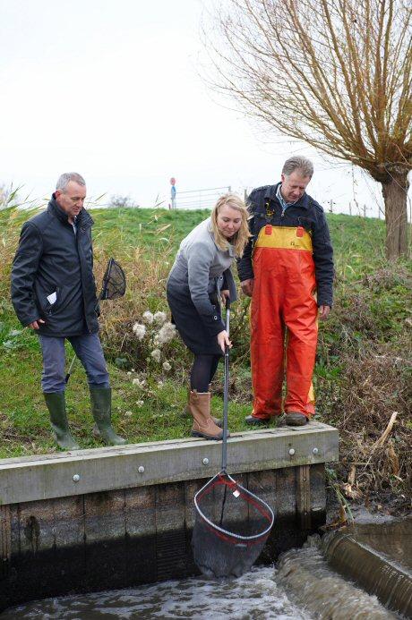 Minister Schultz van Haegen vangt vis uit Koopmanspolder