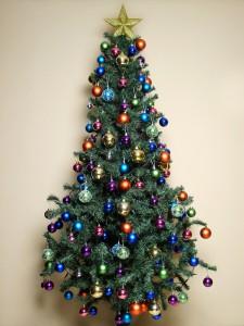 West-Friesland: Inzameling en verbranding kerstbomen