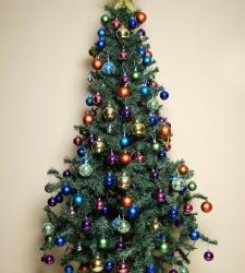 Kerstboomverbranding Hoorn gaat mogelijk niet door