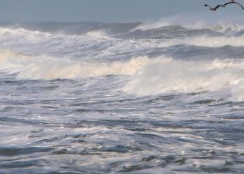 Code geel: Hoog water IJsselmeerkust van Noord-Holland