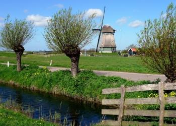 """Ode Westfriesland: """"Is God soms een Westfries"""""""