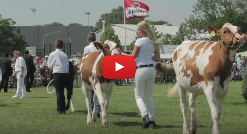 Terugblik Landbouwshow Opmeer [video]