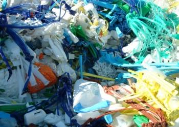 Begin 2016 uitrol containers voor plastic en lege pakken