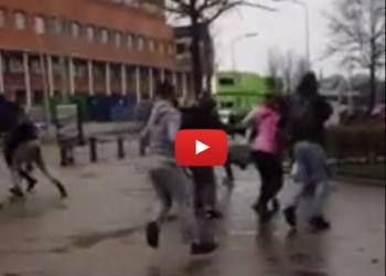Grote vechtpartij Horizon College Hoorn op video