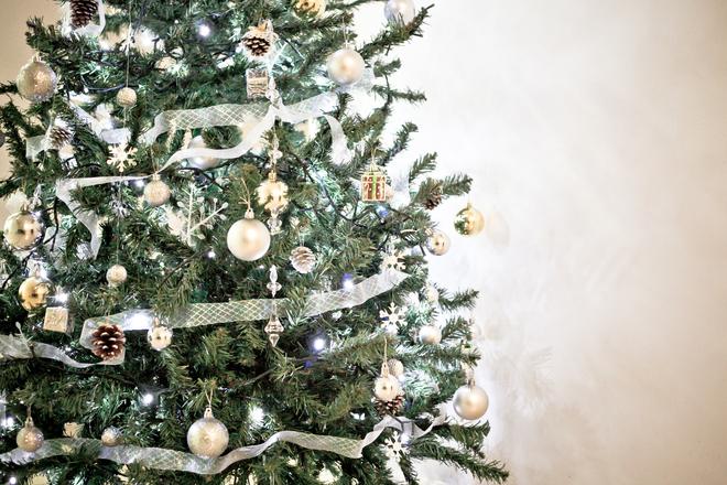 Hoorn gaat kerstbomen versnipperen en verbranden