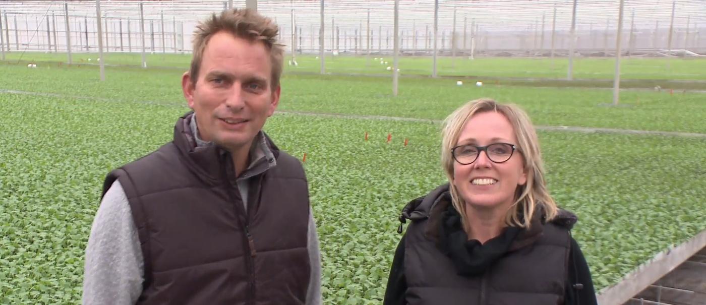 Broccoliteler Verdonk Agrarisch Ondernemer van het Jaar?