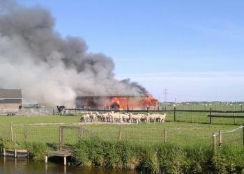 Brand in schuur aan Westeinde in Berkhout