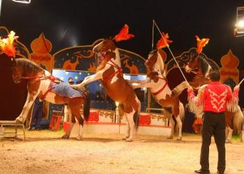 Win kaarten voor circus Alberti naast De Bloesem in Wognum