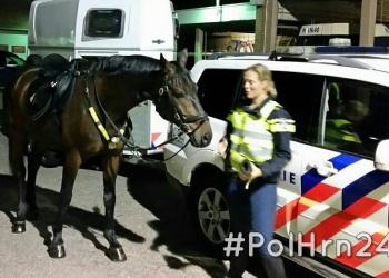 Bereden politie vaker te gast tijdens uitgaansnacht Hoorn