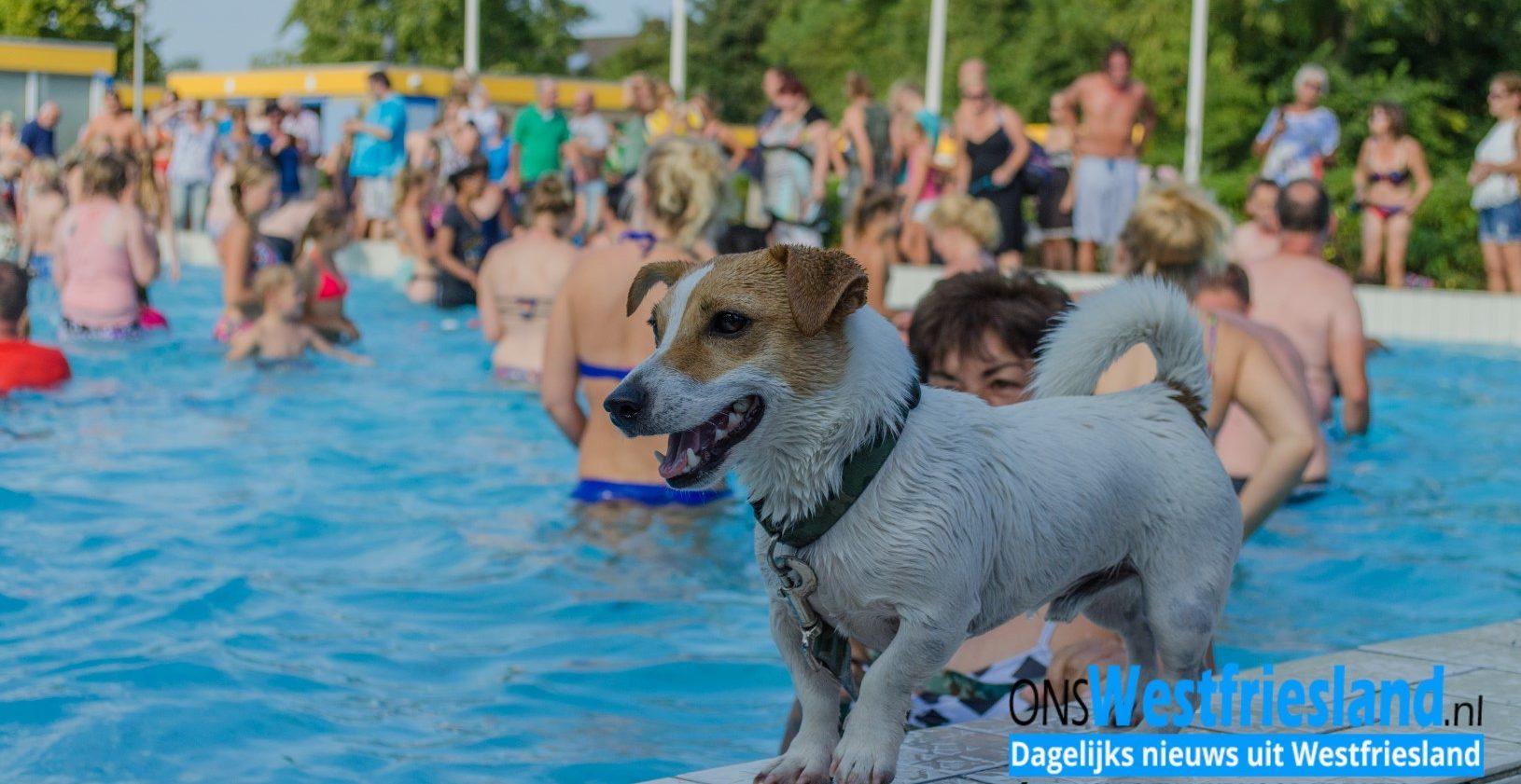 Foto's Hondenplons De Wijzend Zwaag