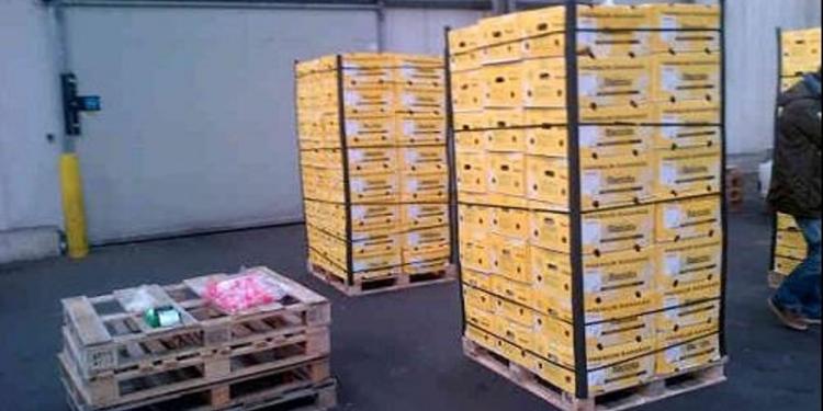 'Drugs-bananen' uit Medemblik naar voedselbank