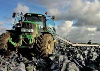 Landbouwsubsidies voor innovaties op Noord-Hollandse boerenbedrijven
