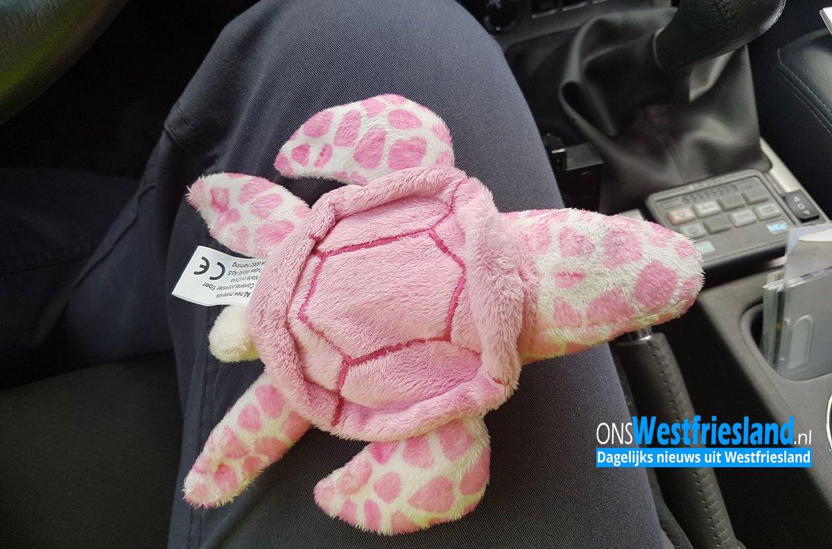 Roze schildpad gevonden op Westfrisiaweg bij afslag Hoogkarspel