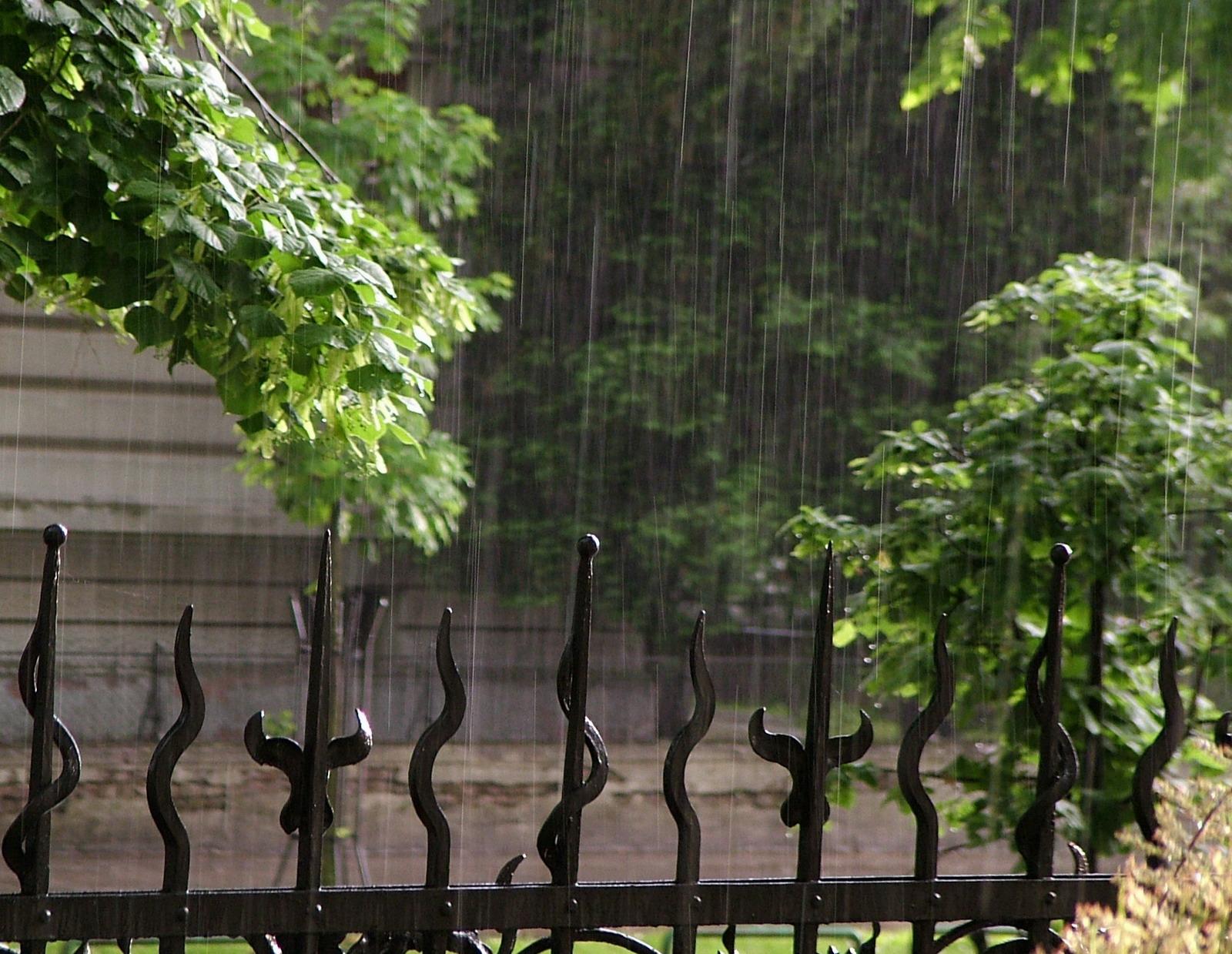 Hele dag regen; Wat is de score in Westfriesland
