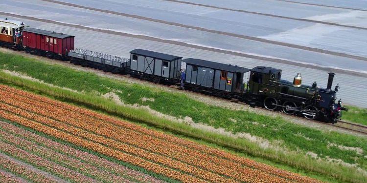 Stoomtram Hoorn Medemblik door de bloemenvelden [video]