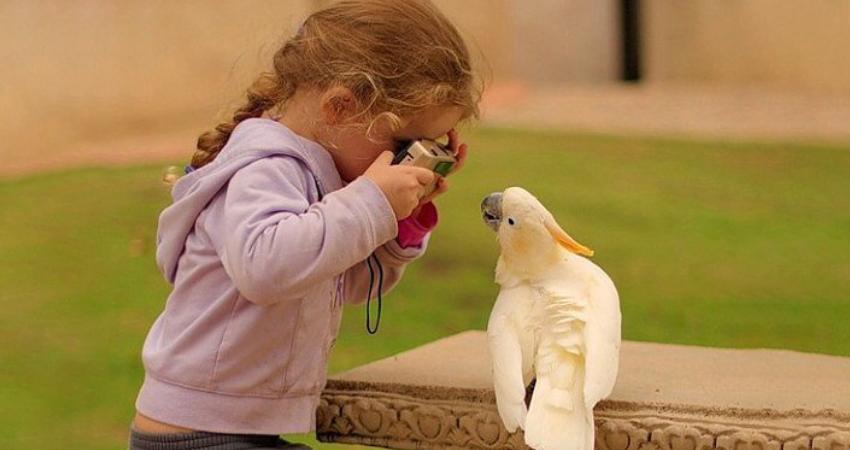 Fotowedstrijd: Jouw-Huis-Dieren(dag)