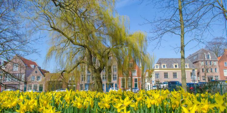 Meepraten over groen beleid van de gemeente Hoorn