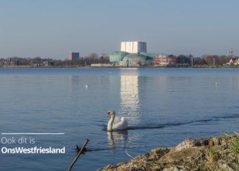 Symbolische foto voor 50 jaar Het Park op de dijk