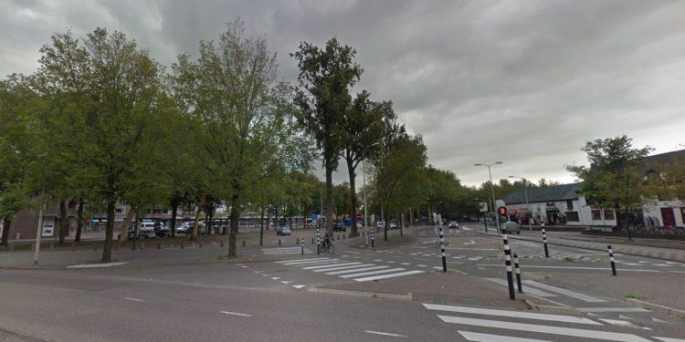 30 grote populieren in binnenstad gekapt of kaalgesnoeid