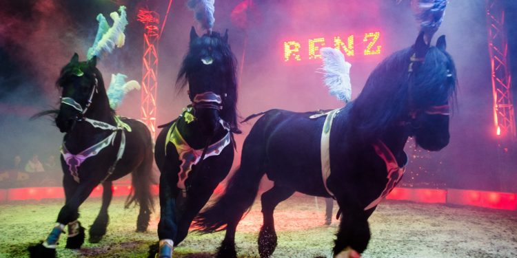 Circus RENZ Berlin komt vier dagen naar Enkhuizen