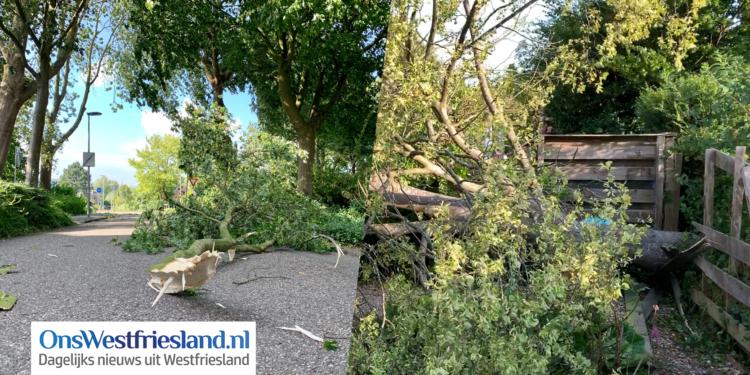 Schade door zomerstorm over Westfriesland [foto's en video's]