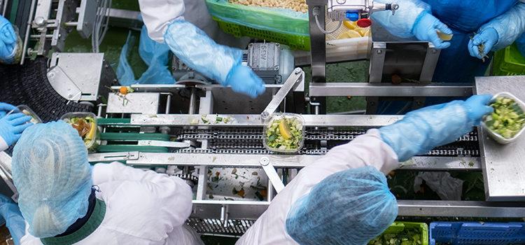 Hessing uit Zwaagdijk neemt uienverwerker over