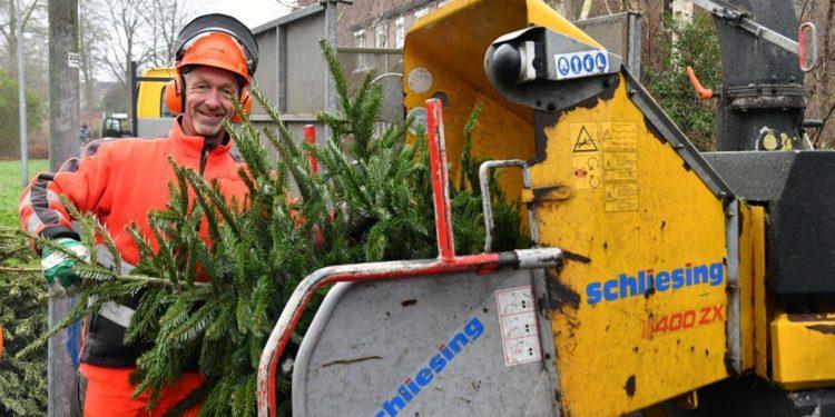 Dit zijn de winnende lotnummers van kerstbomen ingeleverd in Hoorn