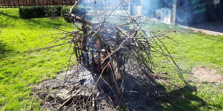 Snoeien in je tuin mag, het daarna verbrand niet