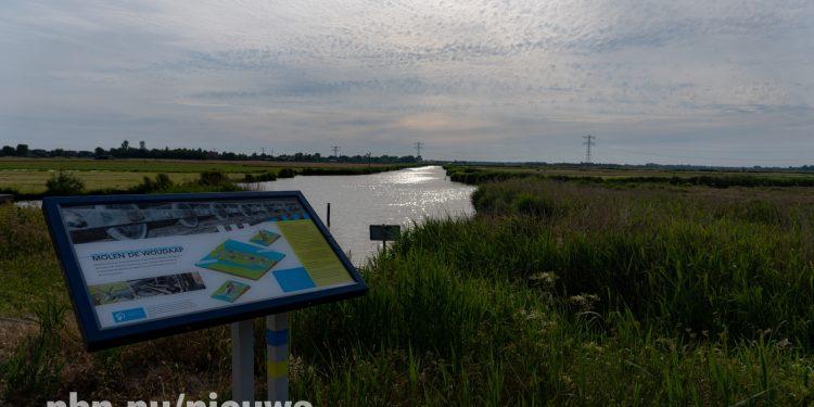 Virus oorzaak vissterfte in polder Het Grootslag en Krommenieër Woudpolder