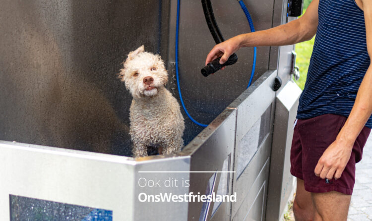 Voor de carwash nog even langs de dogwash; 'Rossie is weer even helemaal wit'