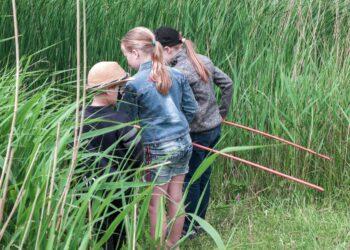 MAK Blokweer avontuurlijke natuurwandeling; Volg het kikkerspoor!