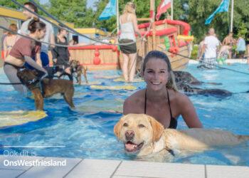 Sluiting zwemseizoen De Wijzend in Zwaag met hondenplons
