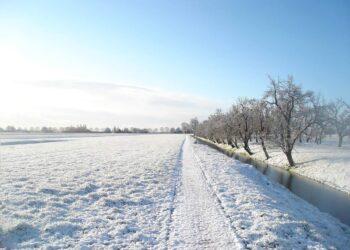 Eerste sneeuw van 2021 in Westfriesland. Dat zetten we op de foto [fotoalbum]