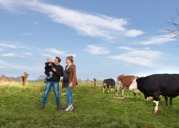 Abovo Media gaat voor Grutto 'samen op weg naar nobel en smaakvol vlees' promoten