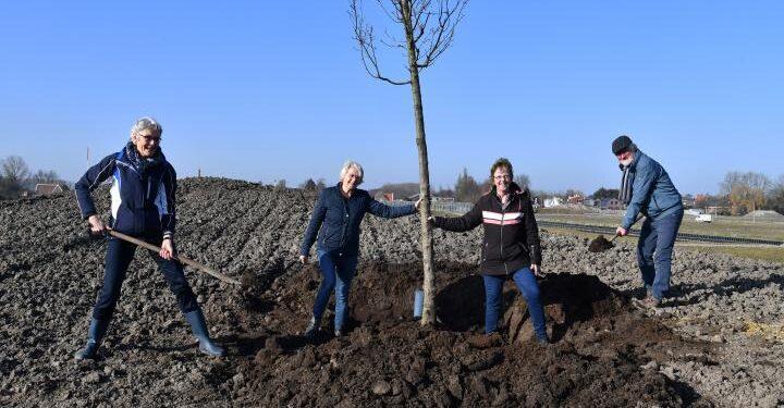 Eerste boom geplant voor bospark Reigersborg Hoogkarspel