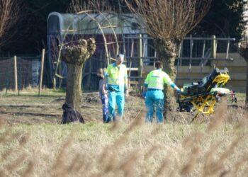 Vrouw gewond bij uitlaten hond in Hoorn