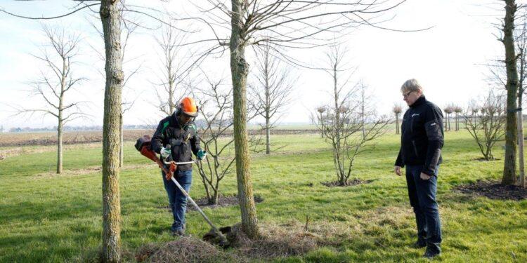 Drie jaar Project GroenStart; Nieuwkomers werken in de praktijk