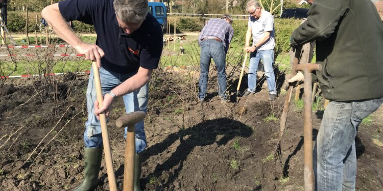 Wijkbewoners leggen Historische Fruittuin Swaegh aan midden in woonwijk